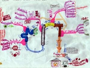 beth-schultz-diuretics-mm