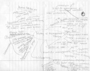 thato masire - idea map 4