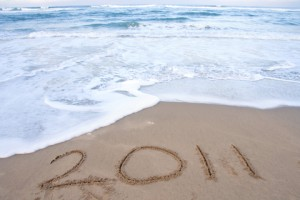 New Year 2011 - dreamstime_14743332